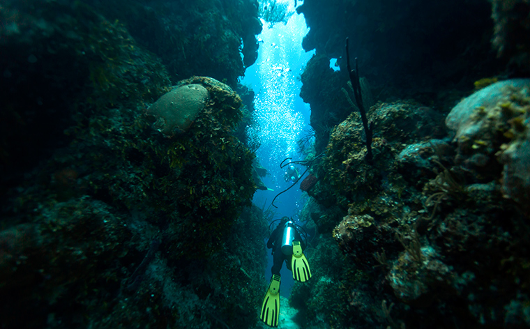 Wetter is better: underwater wonders of the world