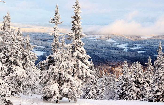 A sneak peek of Trysil, an expensive but worth it resort for skiing in Norway.