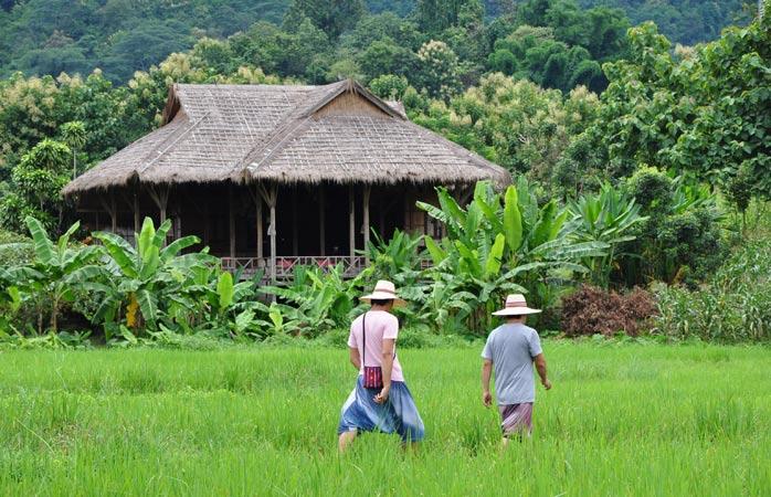 lisu-lodge-eco-lodge-chiang-mai-eco-friendly-hotels