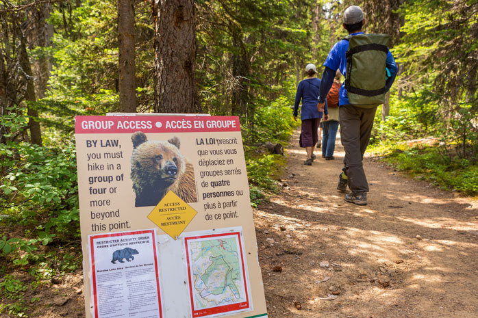 Don't forget to bring your bear spray, when you go hiking in Banff - our furry frinds are often spotted along the trails