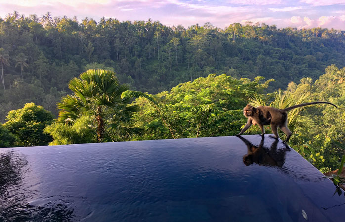Exclusivity is having both the pool and the view all to yourself at Hanging Gardens of Bali