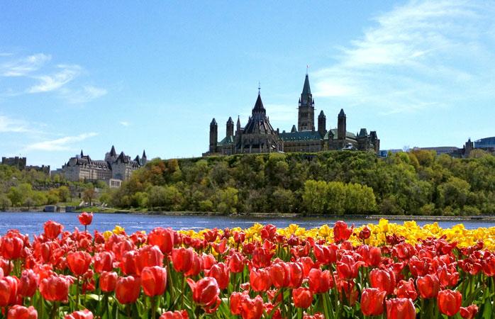 Pretty view of Parliament Hill in Ottawa