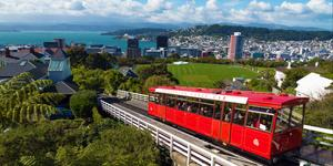 Car Rental in Wellington